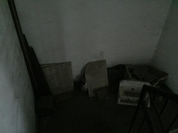 Floor 11.5