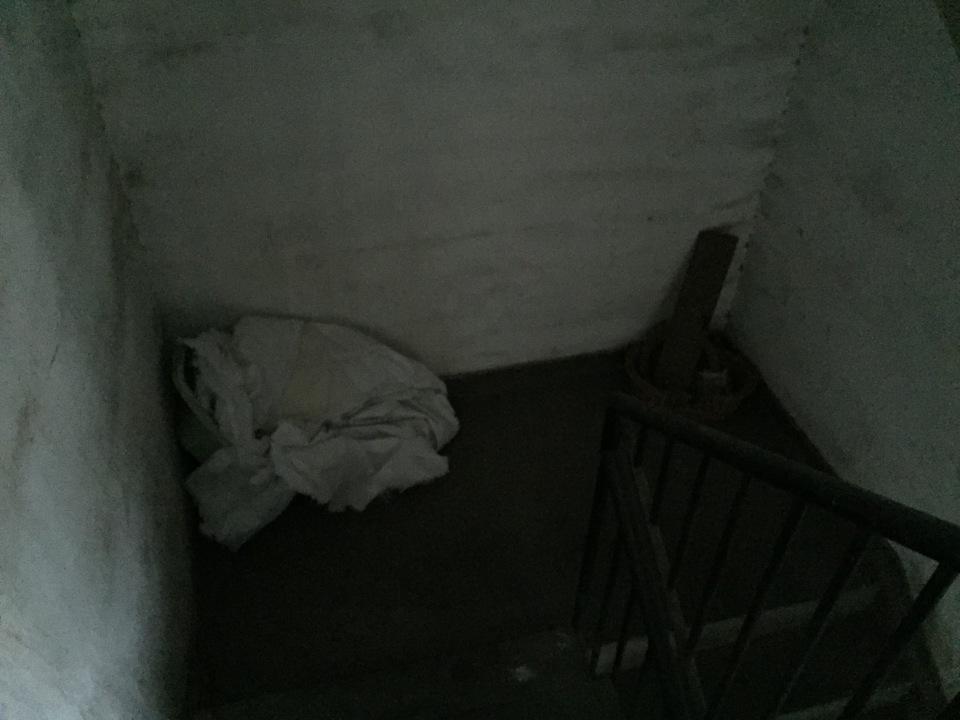 Floor 8.5